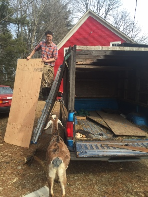 Stowe gets the truck ready for market. Quinn supervises.